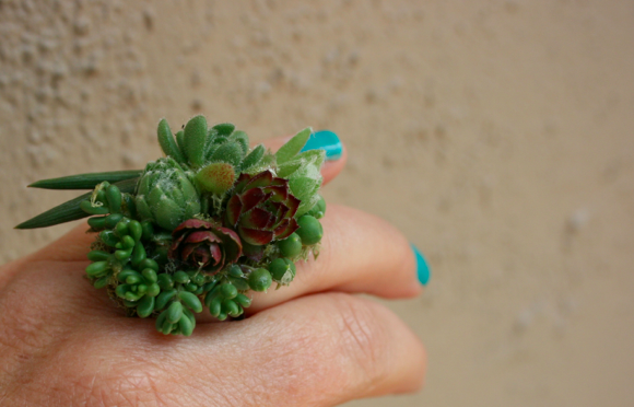 A sweet succulent ring is the perfect DIY mother's day gift idea.