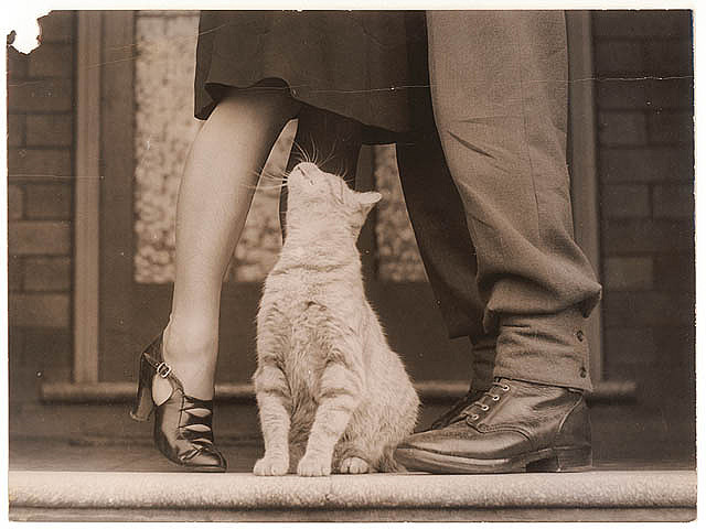 vintage love photos