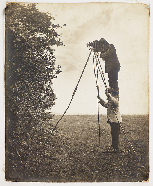 vintage birdwatching