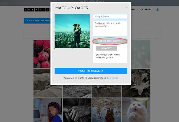 Step 4: fill out title and description and click 'add to community' and select #imadeit