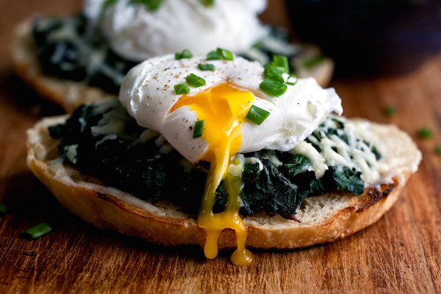 Food Photography Tips For Beginners: Food Photography Tips For Beginners
