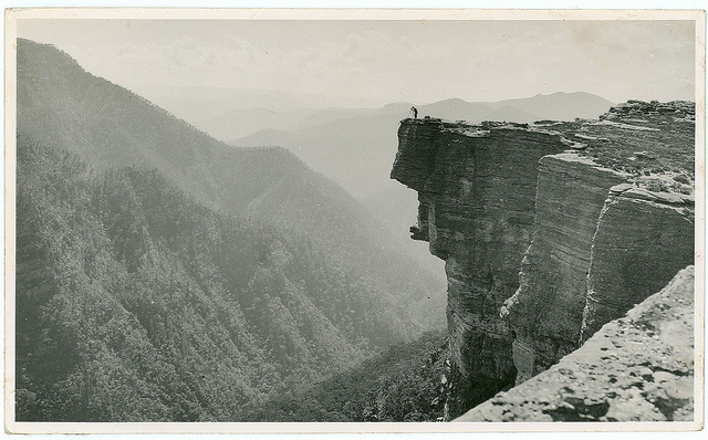 vintage nature photography