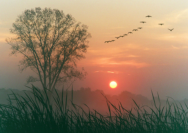 Photo via James Jordan on Flickr.