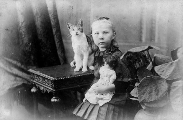vintage cat pictures