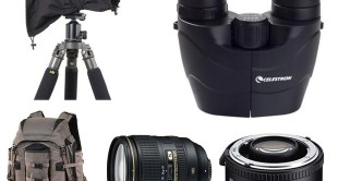 wildlife photography gear guide