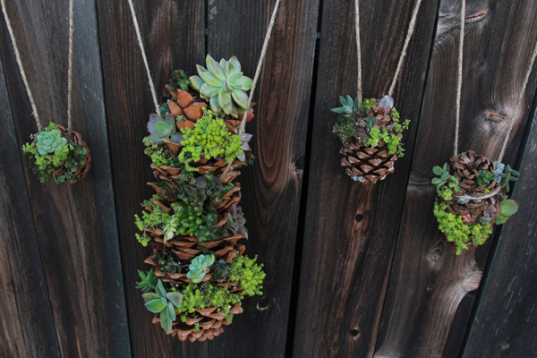 diy pinecone craft idea