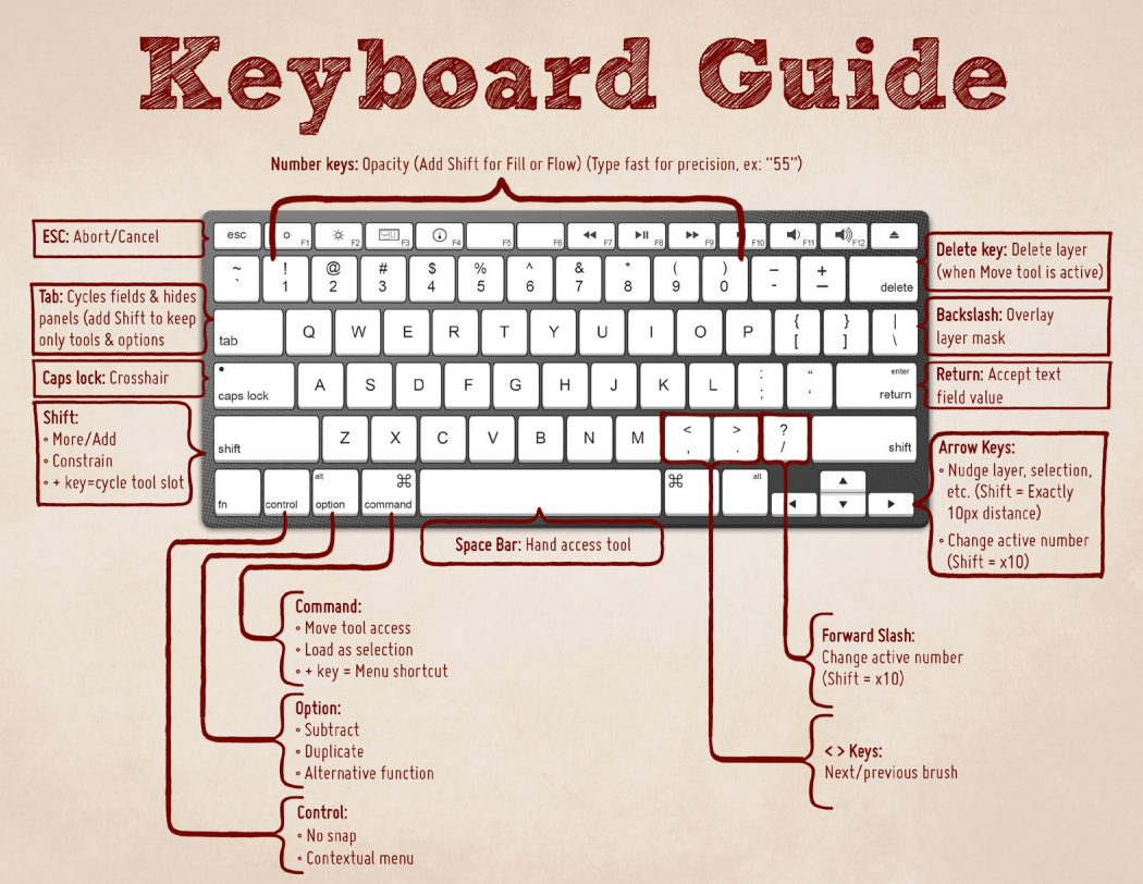 Critical Photoshop Keyboard Shortcuts To Make Your Life Easier