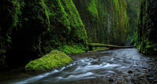 Adobe Photoshop and Lightroom for Landscape Photographers