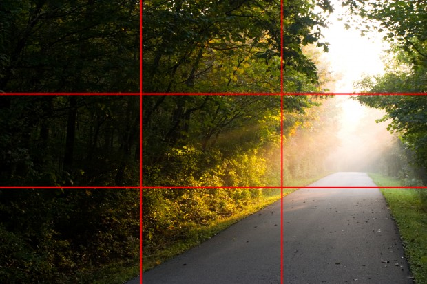 rule of thirds common photo terms