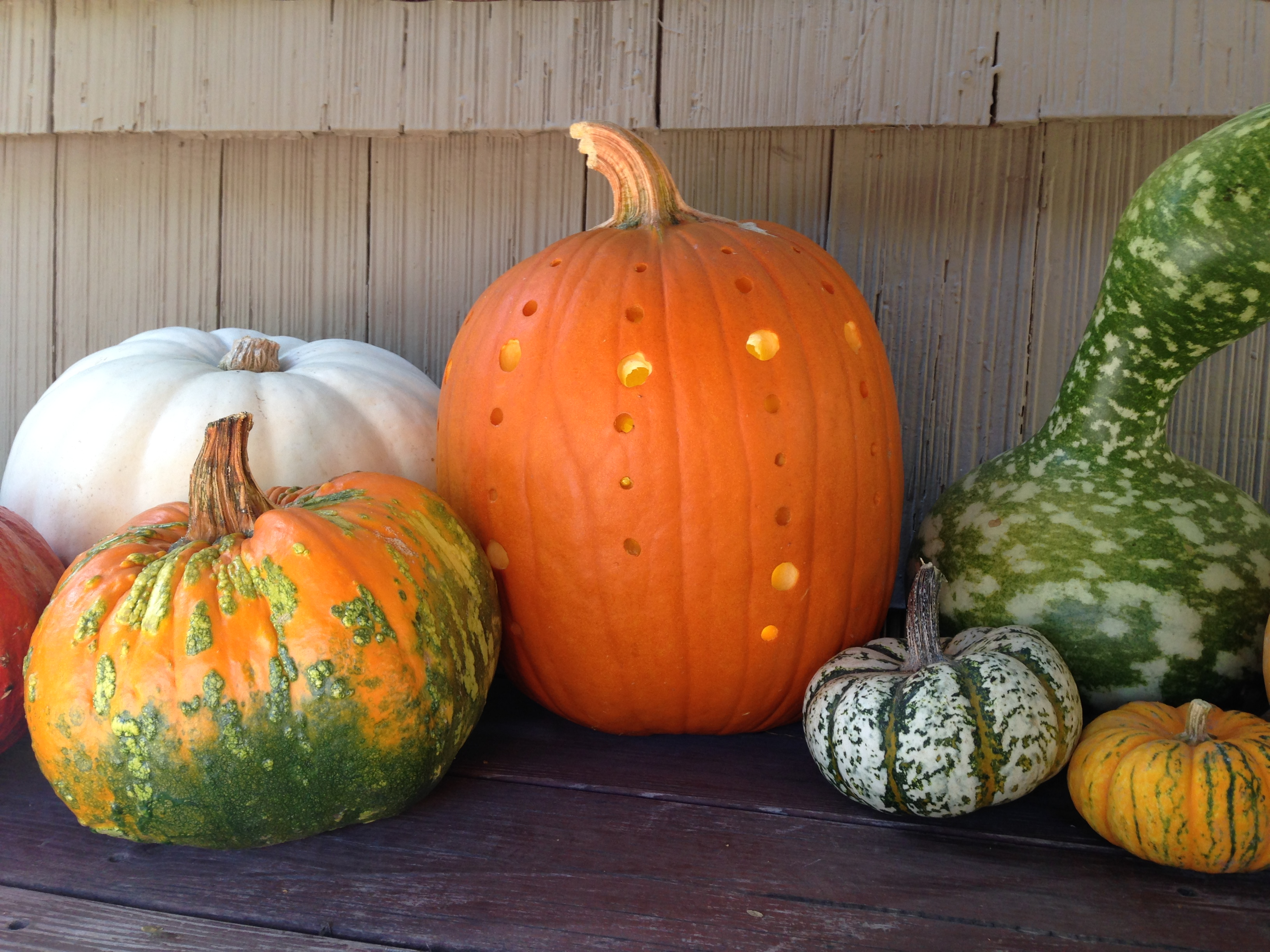 pumpkins & power drills: 10 creative jack-o'-lantern ideas
