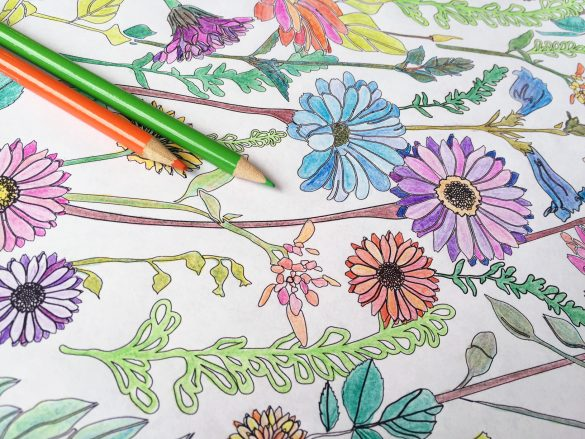 Download the Free CreativeLive Coloring Book!