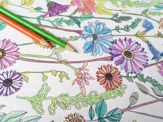 - Download The CreativeLive Printable Coloring Book