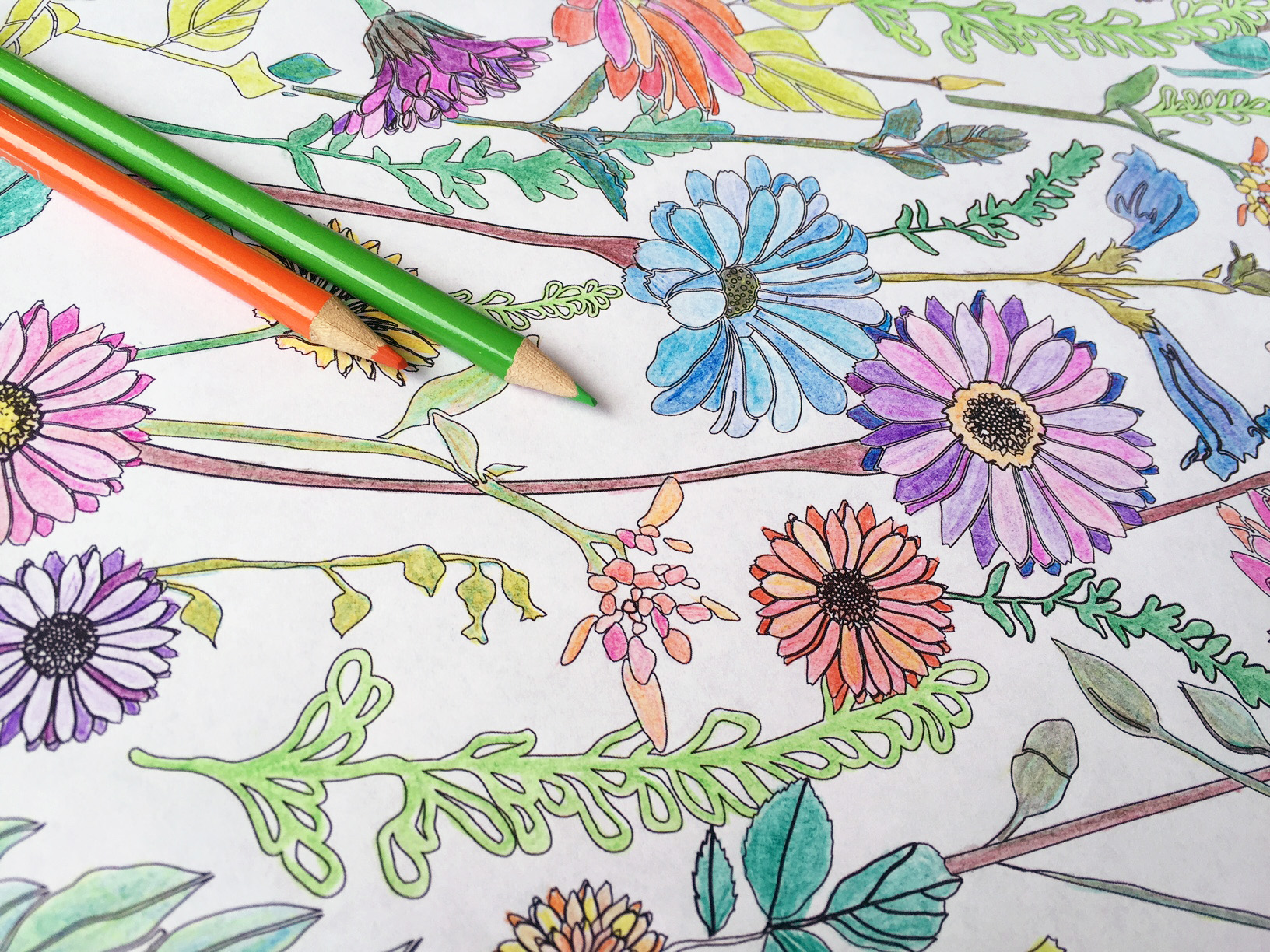 Download the CreativeLive Printable Coloring Book