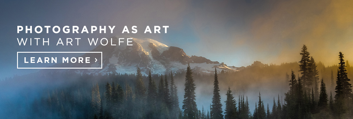 031017_Photo_Art Wolfe_Photography as Art_Blog Ad CTA_LEARN_1240x420