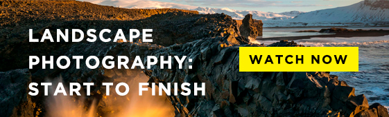 Landscape_Photography_Watch_Now_Blog_CTA_561x170