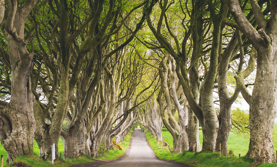 Add These 14 Real-Life Locations to Your Game of Thrones Travel Photo Bucket List