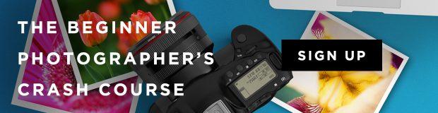 Beginner photographer crash course