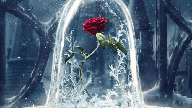 Beauty & the Beast Poster Design: The Not-So-Enchanted Rose