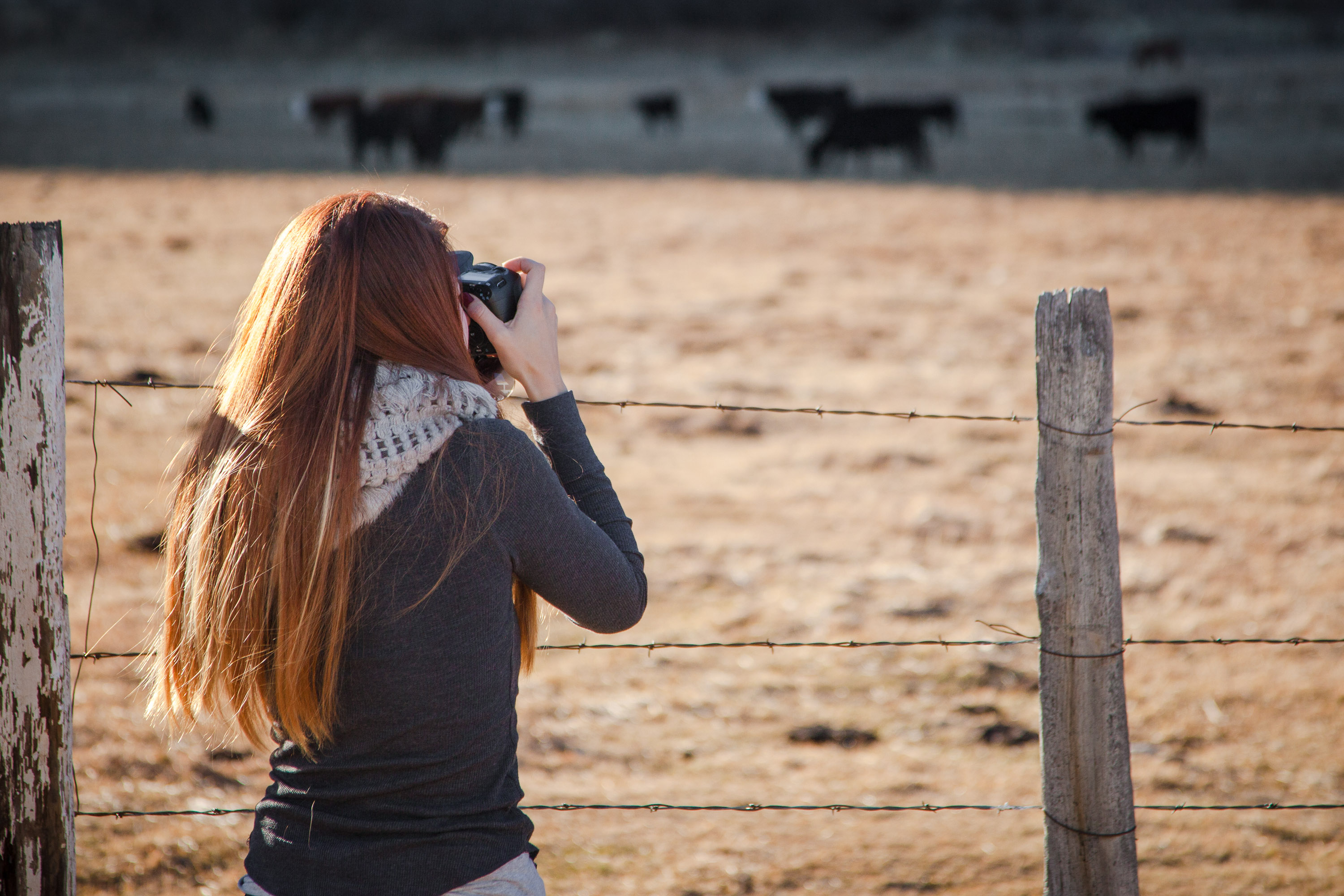 How to Become a Photographer with CreativeLive's Classes